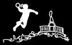 FV HANDBALLJUGEND TSG WILHELMSHÖHE Logo