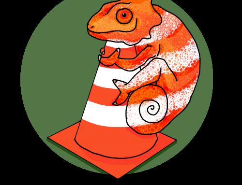 Onlinetraining zu Faschingszeiten mit dem Chamäleon